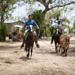 Young men move a bull down a dirt road in front of the nursing home in Monte Christy, Dominican Republic.