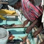 _fishermen_Jamaica_4_e